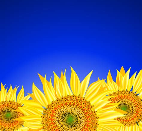 sunflower pattern coreldraw beautiful sunflowers background vector free vector in