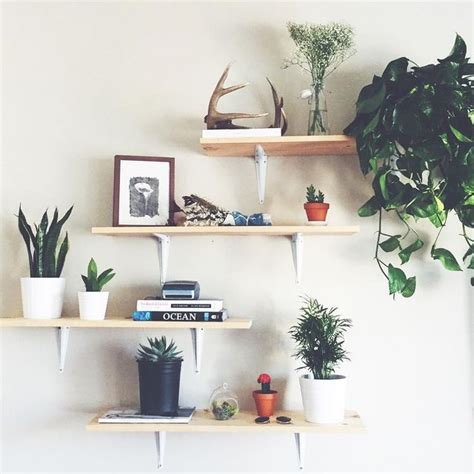 Decorating Ideas For Bedroom Shelves Best 25 Plant Shelves Ideas On Plant Wall