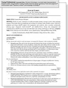 Best Resume Format Young Professional sample resume for a young professional dummies