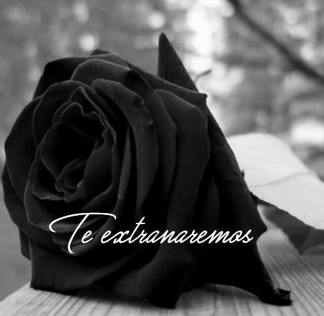 imagenes de rosas negras para whatsapp im 225 genes de rosas negras para whatsapp con frases de luto