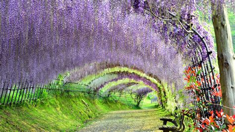 images of beautiful things photos japan s 34 most beautiful places cnn travel