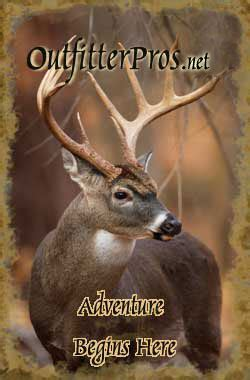 Ohio Deer Hunt Giveaway - ohio whitetail deer hunting guides and outfitters ohio deer hunts
