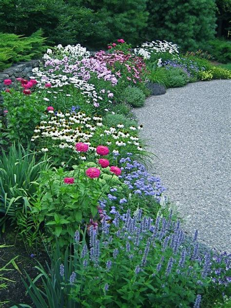 beautiful perennial border grow it flowers pinterest