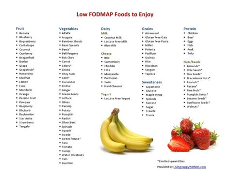 the low fodmap diet step by step a personalized plan to relieve the symptoms of ibs and other digestive disorders with more than 130 deliciously satisfying recipes books best 25 fodmap food list ideas on fodmap