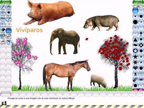 imagenes de animales viviparos animales viviparos images reverse search