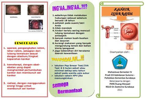 Alat Deteksi Penyakit 9in1 Alat Deteksi Penyakit Lengkap Murah kumpulan materi kebidanan sap dan leaflet kanker serviks