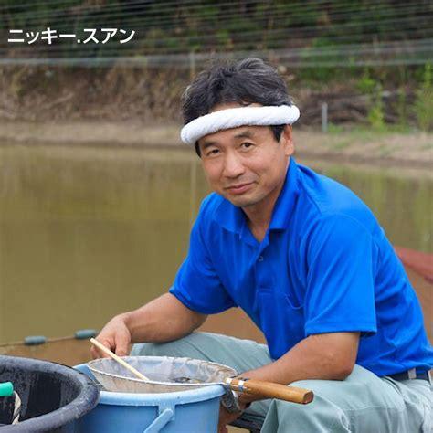 cm japanese koi mix  otsuka koi farm