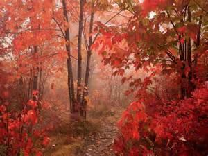 autumn colors autumn colors colors photo 33432460 fanpop