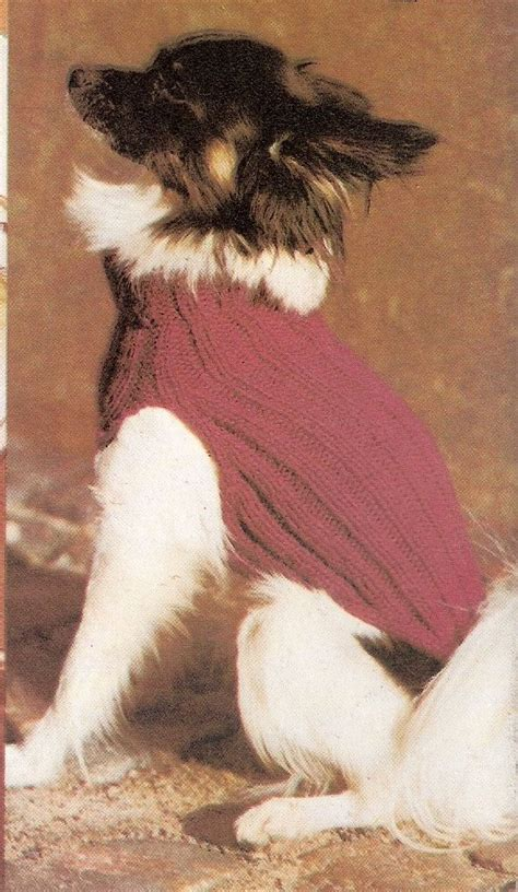 knitting pattern for dog coats uk vintage ribbed dog coat jumper sweater knitting pattern ebay
