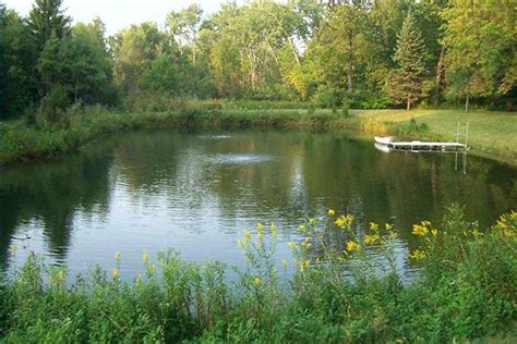 Backyard Ponds For Sale by Fish Pond Instavite Me