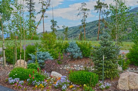 Mountain Landscaping Ideas Mountain Home Landscape In Summit County Co Rustic Landscape Other Metro By Neils