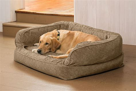 orvis dog bed dog bed with bolster lounger deep dish dog bed orvis uk