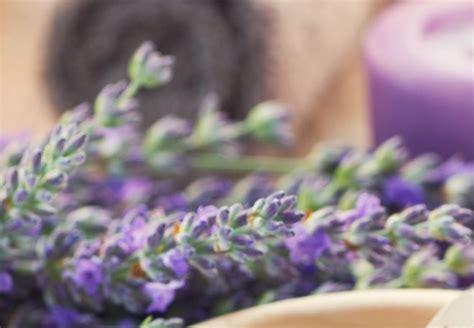rimedio naturale per il mal di testa rimedi naturali contro il mal di testa risparmiare di