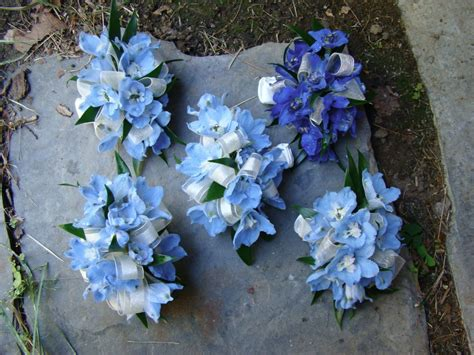 Corsage Flowers by Hydrangea Wrist Corsage Wrist Corsages Made Of Blue