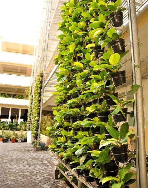vertical garden blognya ilmu