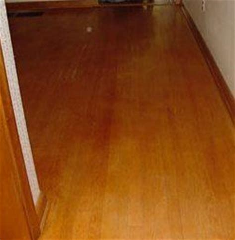 Steam Cleaning Bamboo Floors by Bamboo Floor Bamboo Floor Steam Cleaning
