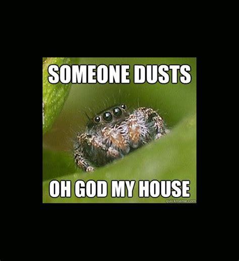Misunderstood Spider Meme - misunderstood spider meme