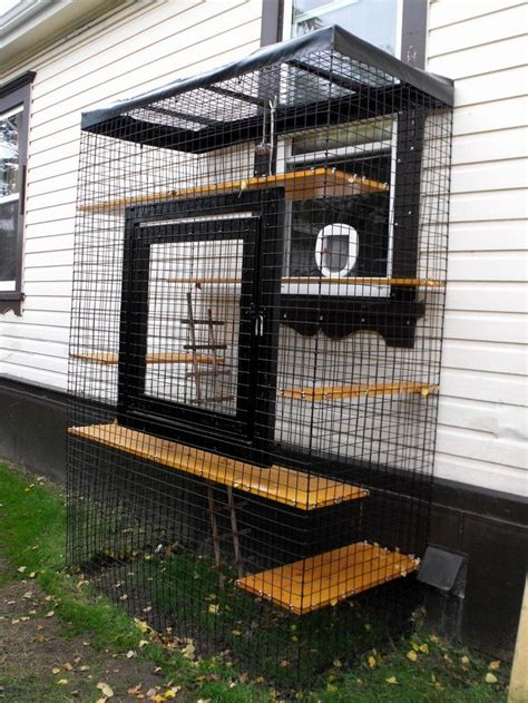 How To Build A Closet In A Room With No Closet by How To Build An Outdoor Cat Run Diy Projects For Everyone