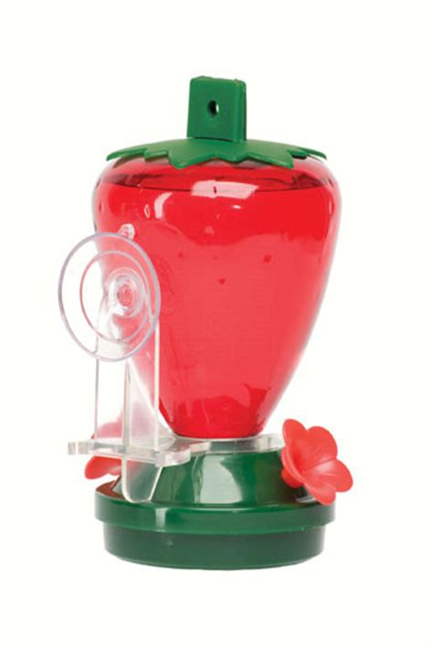 strawberry window hummingbird feeder includes suction cup