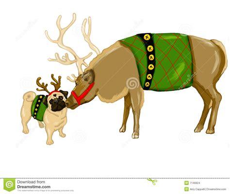 pug reindeer reindeer and pug stock images image 7146824