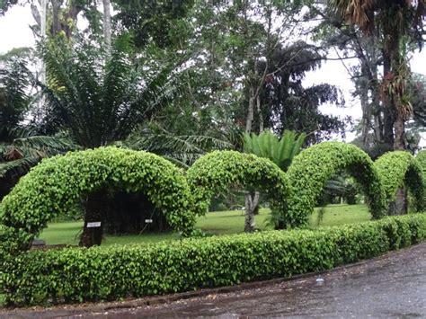 Aburi Botanical Gardens Aburi Botanical Gardens Hungryng