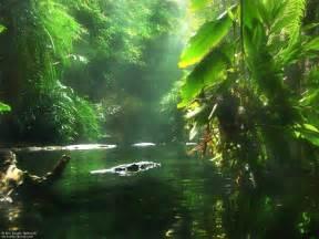 belles images nature eau