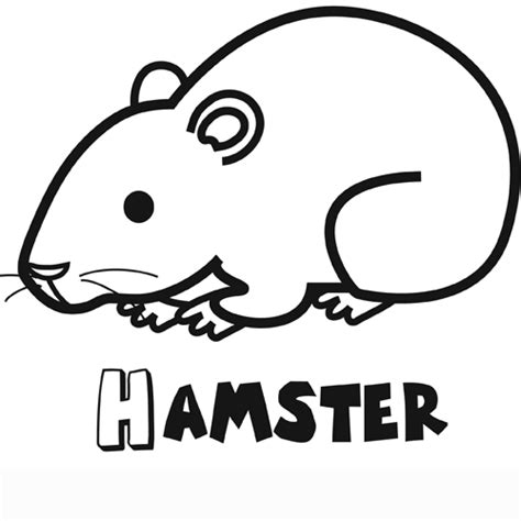 imagenes de animales omnivoros para imprimir animales domesticos para colorear e imprimir imagui