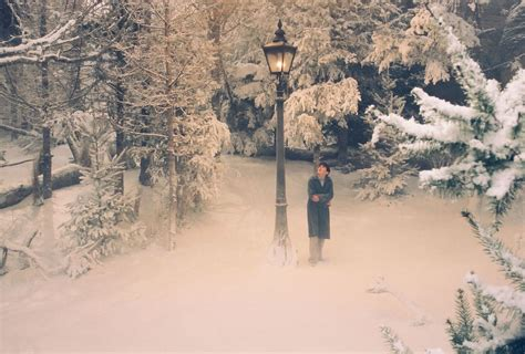 Setting Of Narnia The The Witch And The Wardrobe by The Chronicles Of Narnia The The Witch And The