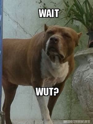 Wait Wut Meme - meme creator wait wut meme generator at memecreator org