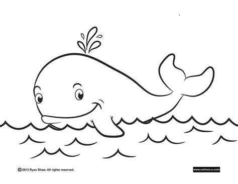 coloring pages for whales blue whale coloring pages