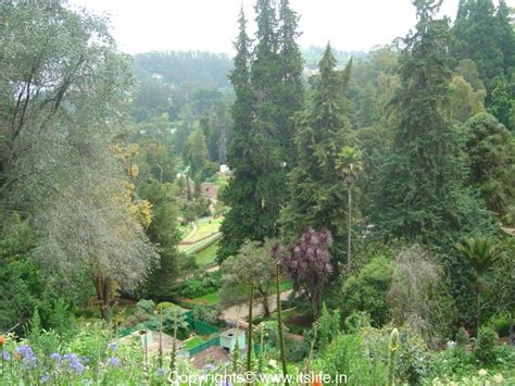 Ooty Botanical Garden Ooty Botanical Gardens Tamil Nadu Tourism Places Of Interest In Ooty