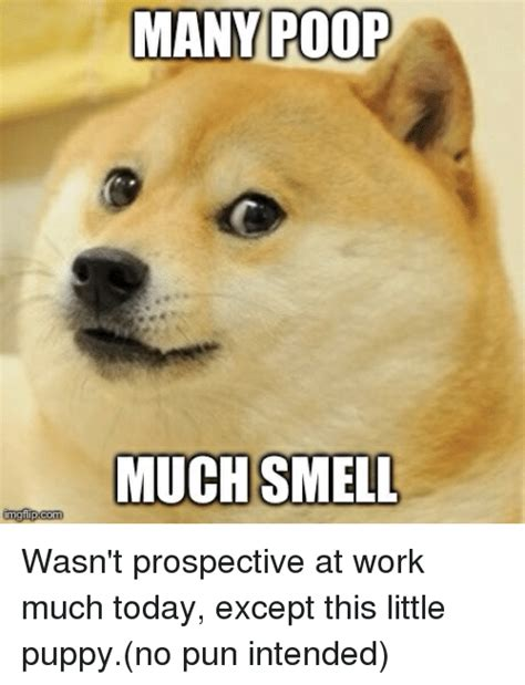 Pooping At Work Meme - 25 best memes about advice animals poop and work