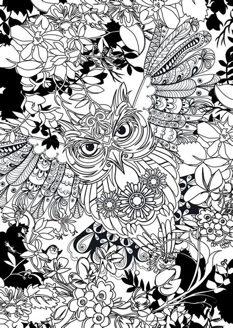 owl coloring best 25 owl coloring pages ideas only on owl