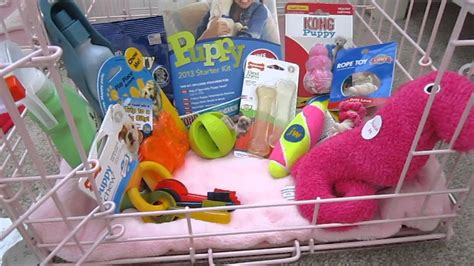 what you need for a puppy supplies you need for a puppy