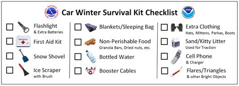 Philosophy Winter Weather Survival Kit by Winter Weather Safety