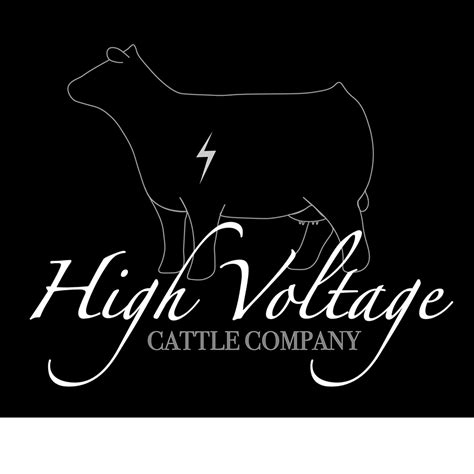 high voltage cattle company high voltage cattle co home