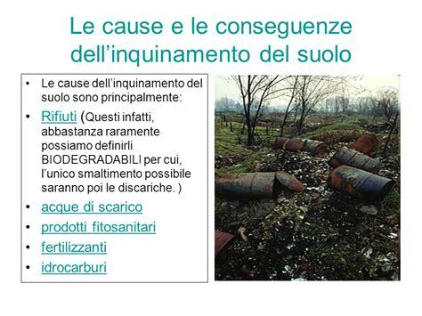 inquinamento alimentare le cause e le conseguenze dell inquinamento suolo