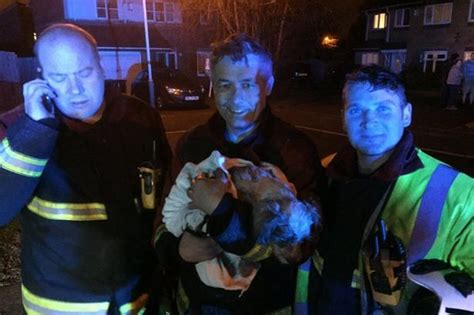 house of dog called dog given kiss of life after being saved by hero firefighters birmingham mail
