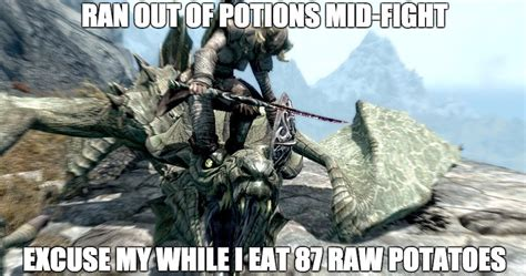 Skyrim Memes - hilarious skyrim memes only true fans will understand