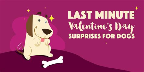 valentines surprises for 5 s day treats surprises for dogs