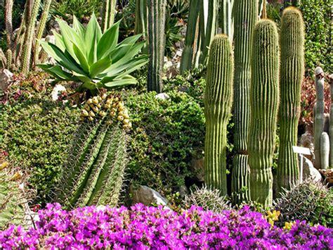 giardino botanico montecarlo area protetta regionale giardini botanici hanbury points