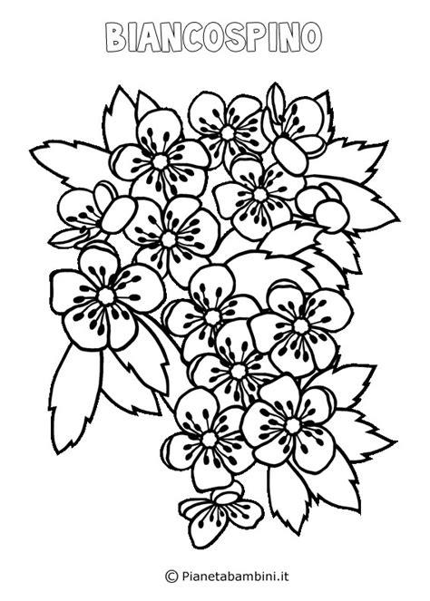 fiori da colorare primavera disegni di fiori di primavera da stare e colorare