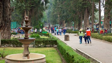 gardens parks pictures view images of toluca