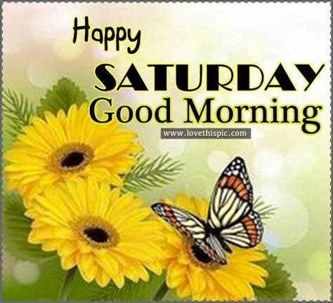 happy saturday 10 best ideas about happy saturday morning images on