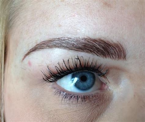 feather tattoo eyebrow sydney 17 best ideas about eyebrow feathering on pinterest