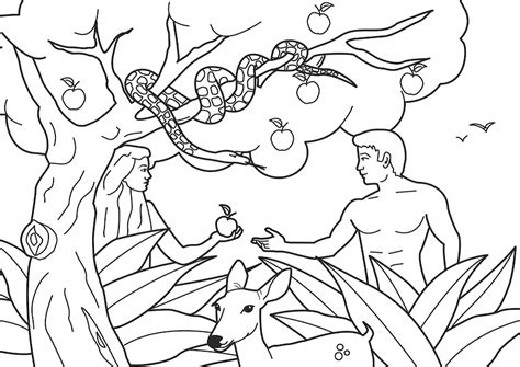 為孩子們的著色頁 adam and eve coloring pages