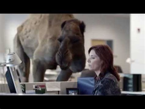 geico marine insurance direct funny commercial drill sergeant therapist geico