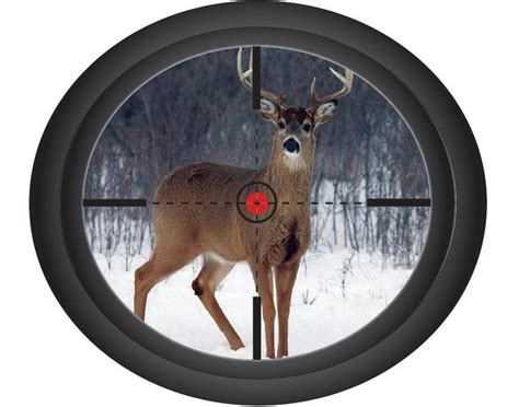 deer hunting art home decor sports poster wall art print 49 best sports wall d cals images on pinterest sports