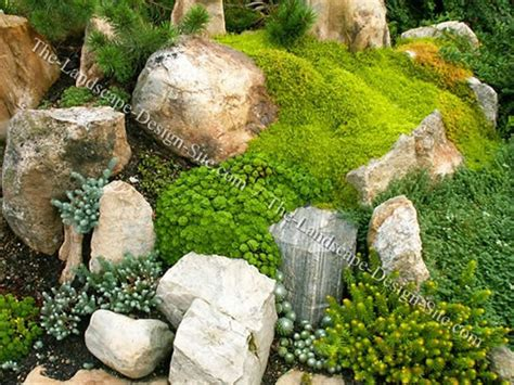 alpine garden ideas vertical home garden