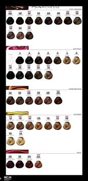 l oreal preference color chart 12 best images about l or 233 al preference infinia